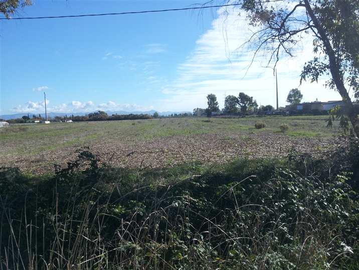 Terreno agricolo, Latina
