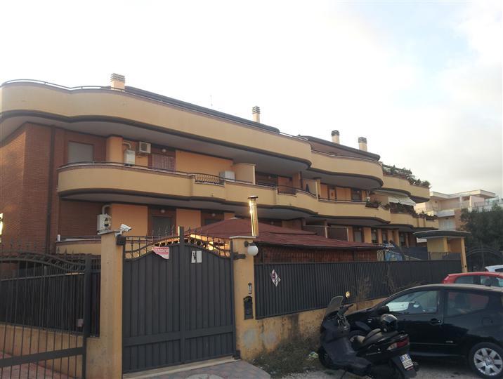 appartamenti indipendenti a latina in vendita e affitto