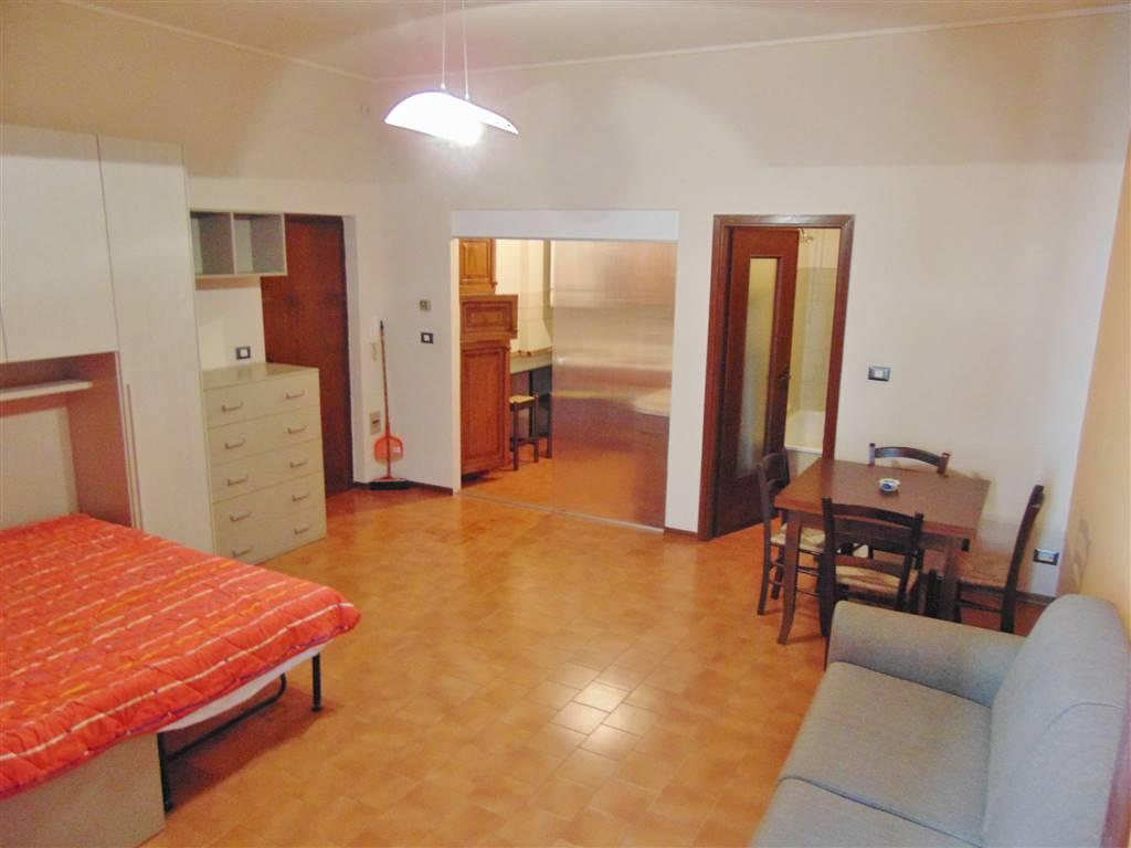 proponiamo in affitto bilocale arredato. composto di, ingresso in open space con camera e divano letto, cucina, servizi, balcone. ascensore. Spese