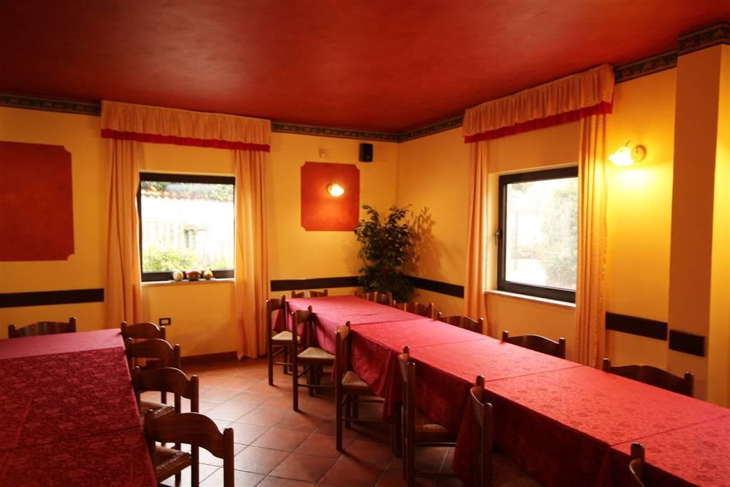 Roccaforte Mondovì, sulla piazza centrale, proponiamo in vendita la gestione dell'unico e storico ristorante/bar del paese, L'attività di circa 200mq,