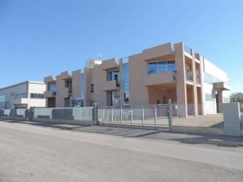 Capannone in affitto a Borgo San Dalmazzo, 2 locali, prezzo € 1.300 | PortaleAgenzieImmobiliari.it