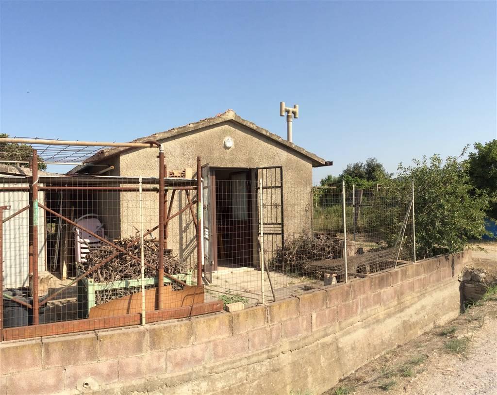 Plot of land in CAMPIGLIA MARITTIMA