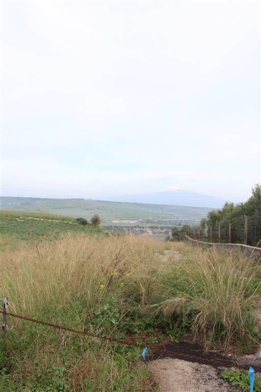 Terreno Agricolo in vendita a Carlentini, 9999 locali, zona Località: C/DA PAGLIARAZZI, prezzo € 20.000 | CambioCasa.it