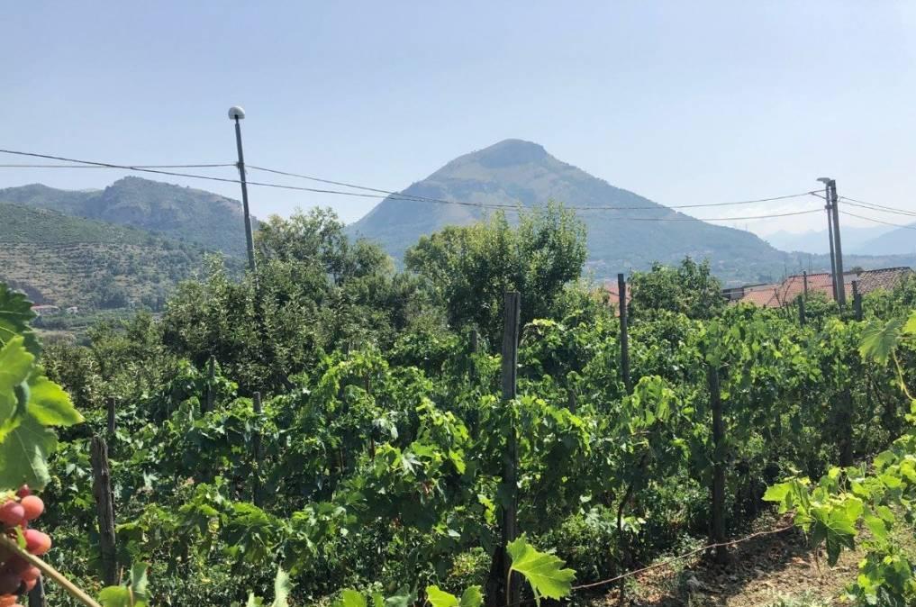 OGLIARA, SALERNO, Terreno agricolo in vendita di 700 Mq, Classe energetica: G, composto da: , Prezzo: € 25.000