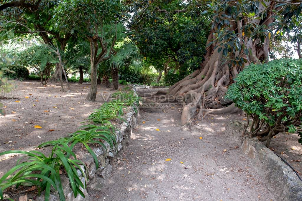 giardino condominilae - Rif. LR-MENTON-01