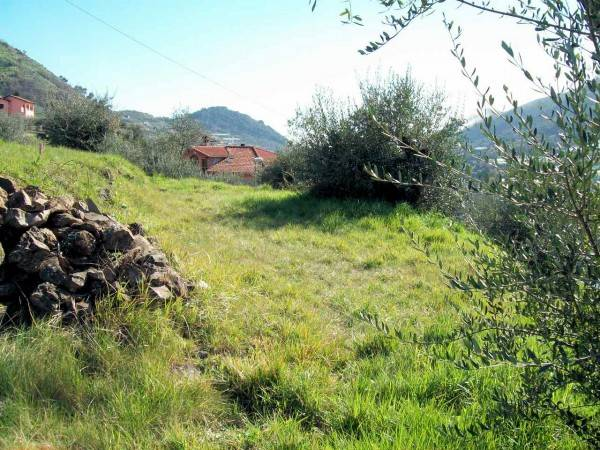 SAN BIAGIO DELLA CIMA, Building plot of land for sale of 1900 Sq. mt., Energetic class: Not subject, placed at Ground, composed by: , Price: € 49,000
