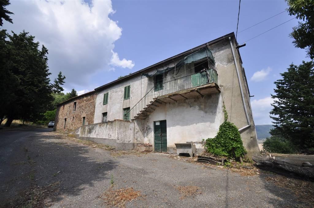 Azienda Agricola in vendita a Pomarance, 1 locali, zona Zona: Lustignano, prezzo € 250.000 | CambioCasa.it