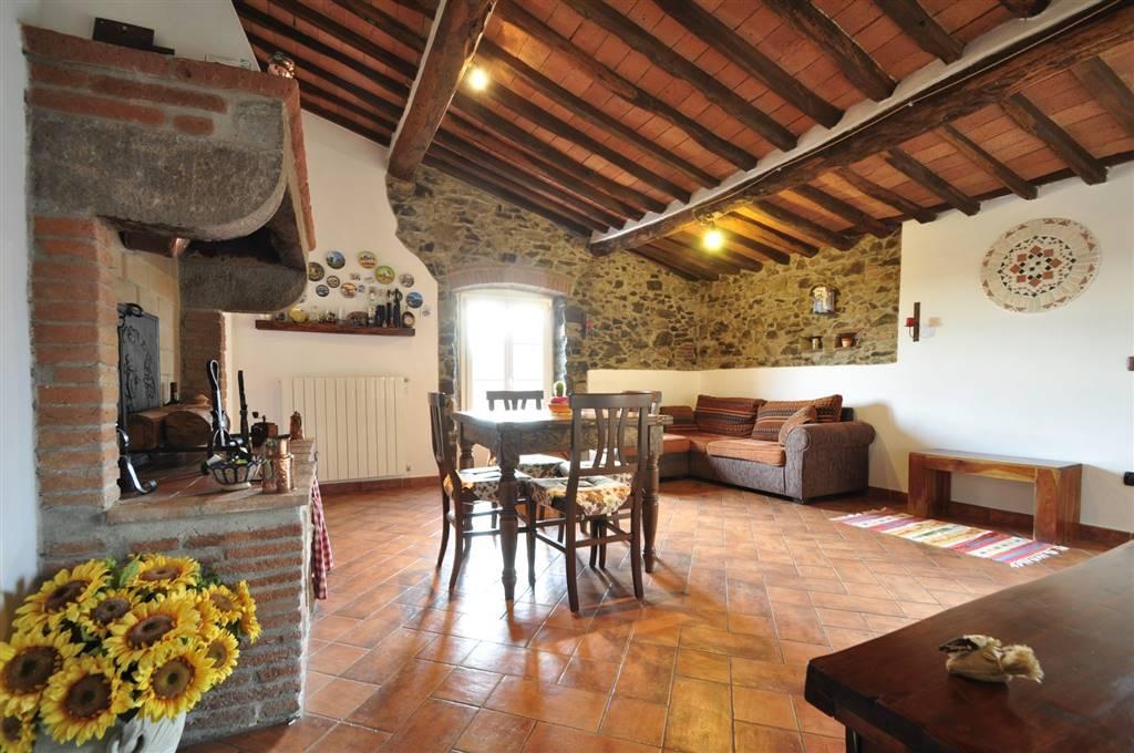 Appartamento in vendita a Campiglia Marittima, 3 locali, prezzo € 160.000   PortaleAgenzieImmobiliari.it