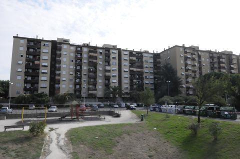 Trilocale, Roma