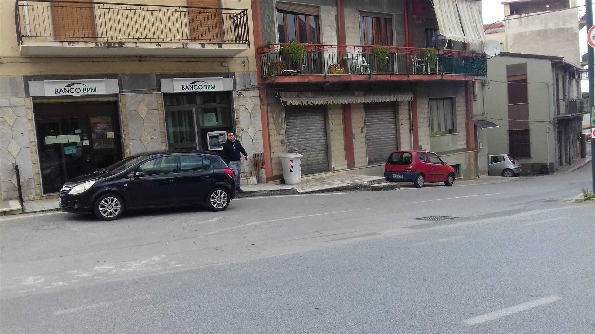Attività / Licenza in vendita a Torrenova, 4 locali, prezzo € 96.000   CambioCasa.it
