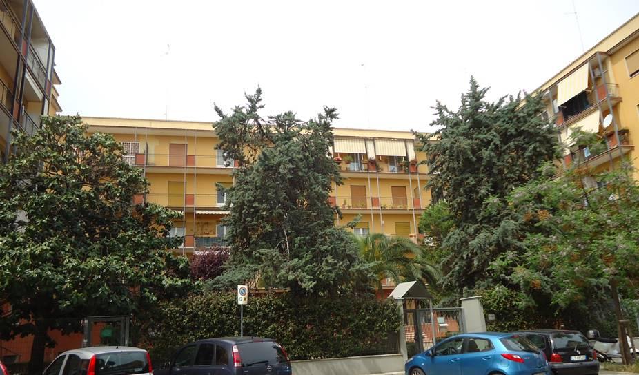 Stanza / Camera in Via Zanardelli  63/d, S. Pasquale, Bari