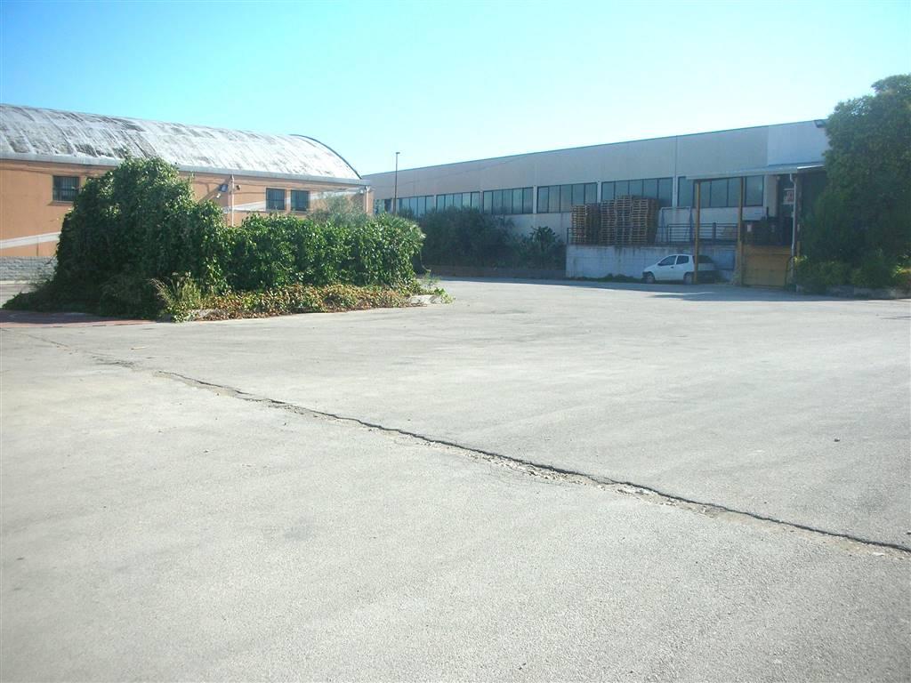 Affitto capannone industriale via cerignola canosa di puglia rif ri 6876uf16567 - Agenzia immobiliare cerignola ...