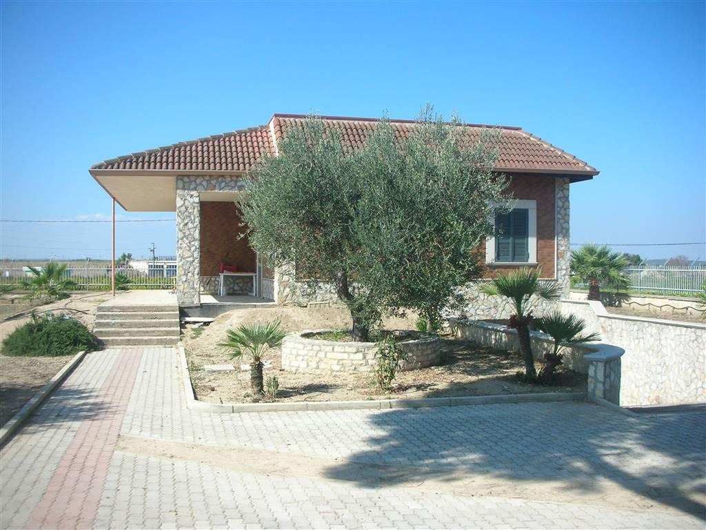 Rustico casale in Contrada Tre Canonici, Canosa Di Puglia