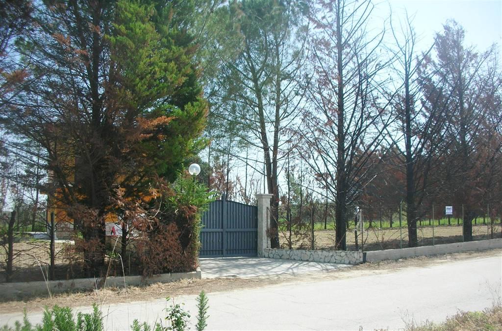 Villa in Contrada San Vito, Canosa Di Puglia