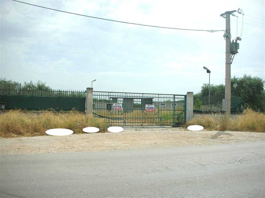 Alla Via Corsica e precisamente all'ingresso della Città provenendo dalla SP 231 ex SS 98 e quindi in posizione strategica, si propone la vendita /