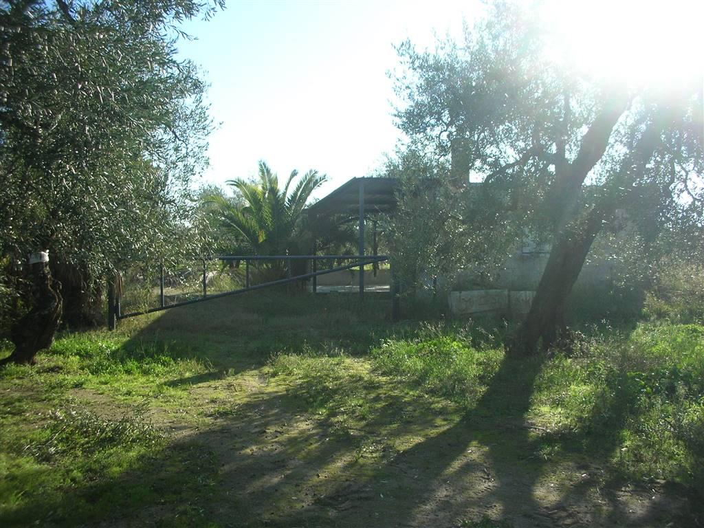 Terreno Agricolo in vendita a Canosa di Puglia, 9999 locali, prezzo € 20.000 | CambioCasa.it