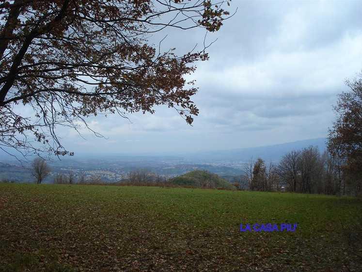 Terreno Edificabile Residenziale in vendita a Carolei, 9999 locali, Trattative riservate | CambioCasa.it