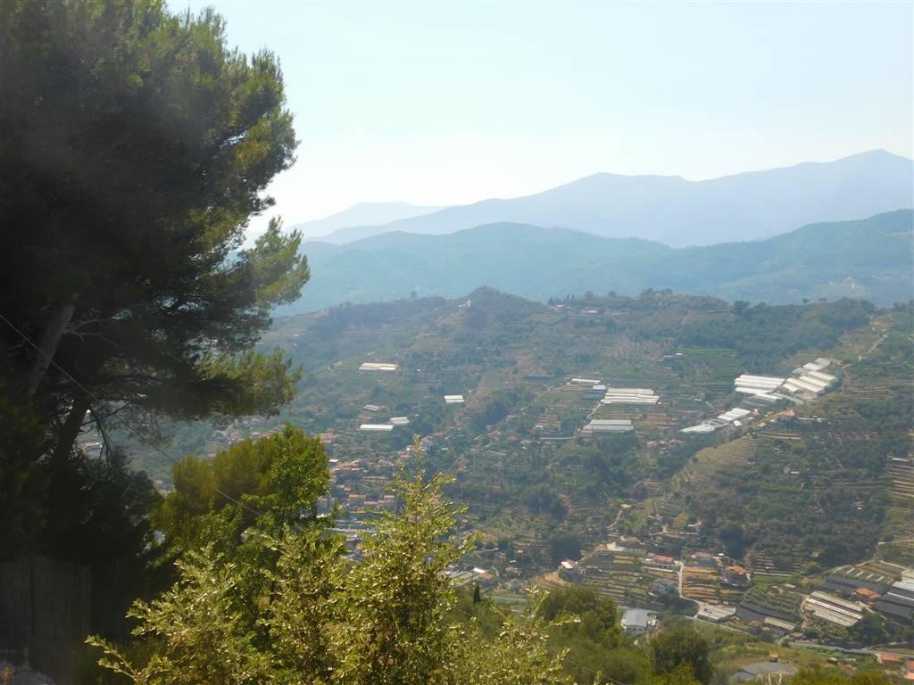 Soluzione Indipendente in vendita a Vallebona, 6 locali, prezzo € 350.000 | PortaleAgenzieImmobiliari.it