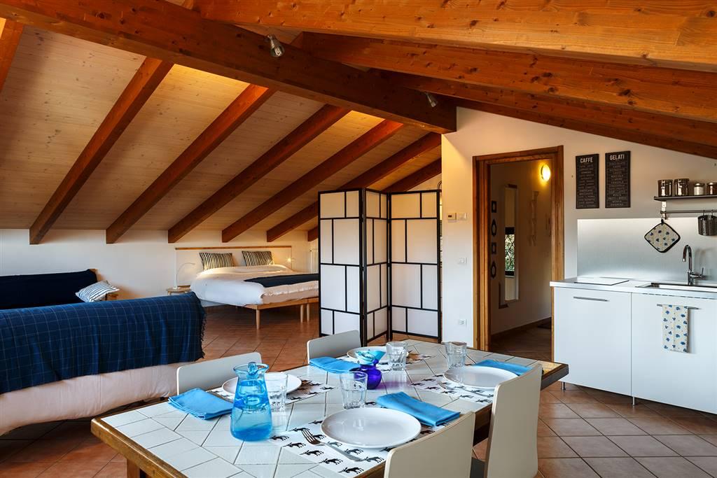 Attico / Mansarda in affitto a Ivrea, 1 locali, zona Località: LAGO SIRIO, prezzo € 450 | PortaleAgenzieImmobiliari.it