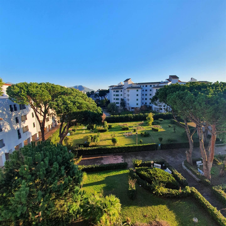 Appartamento in vendita a Cellole, 7 locali, zona Domizia, prezzo € 160.000   PortaleAgenzieImmobiliari.it