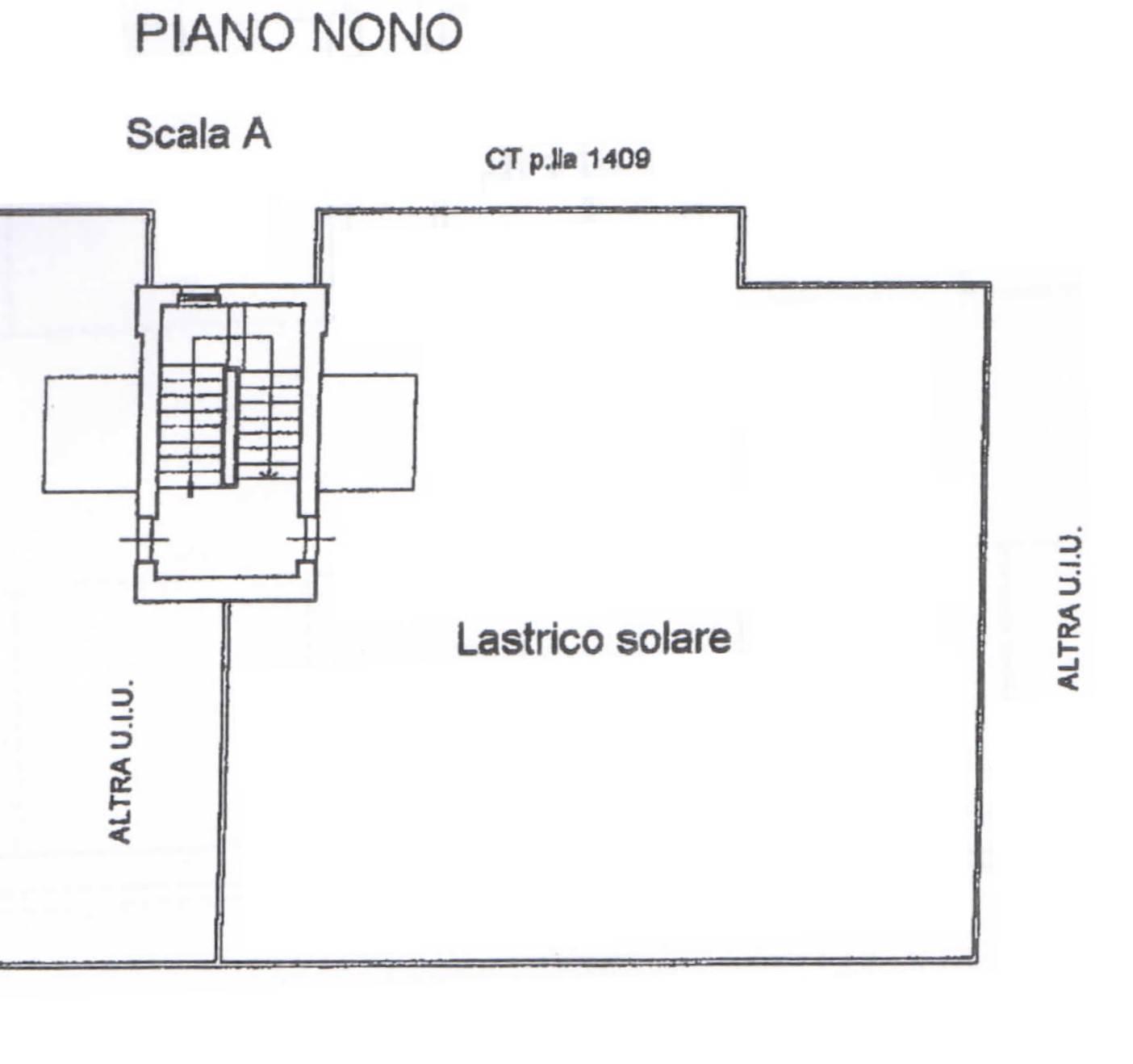 Piantina Terrazzo
