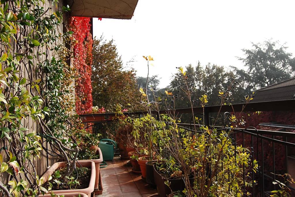 in vendita Appartamento, Lotto, Novara, s. Siro, Milano ...