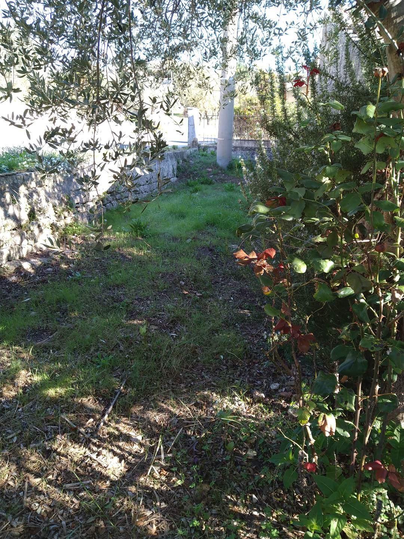 striscia di giardino retro casa