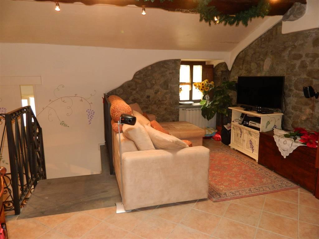 Soluzione Semindipendente in affitto a Fivizzano, 7 locali, prezzo € 350 | CambioCasa.it