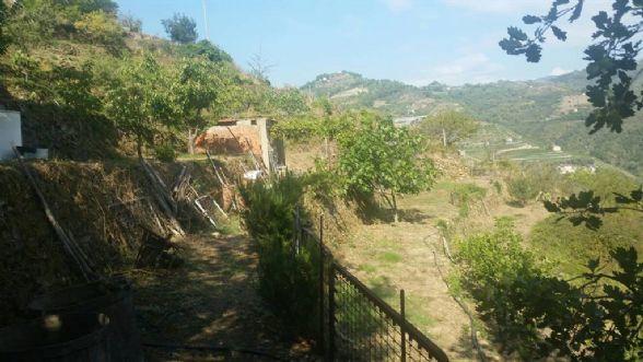 Terreno Agricolo in vendita a Soldano, 9999 locali, prezzo € 30.000   CambioCasa.it