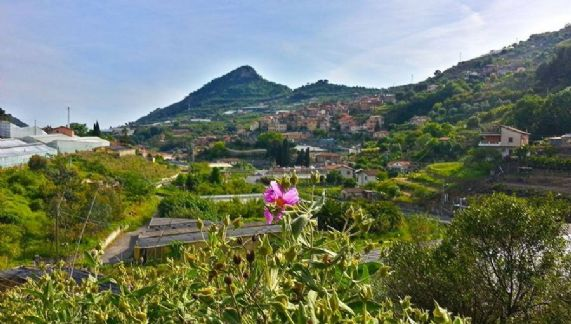 Terreno Edificabile Residenziale in vendita a San Biagio della Cima, 9999 locali, prezzo € 350.000 | CambioCasa.it