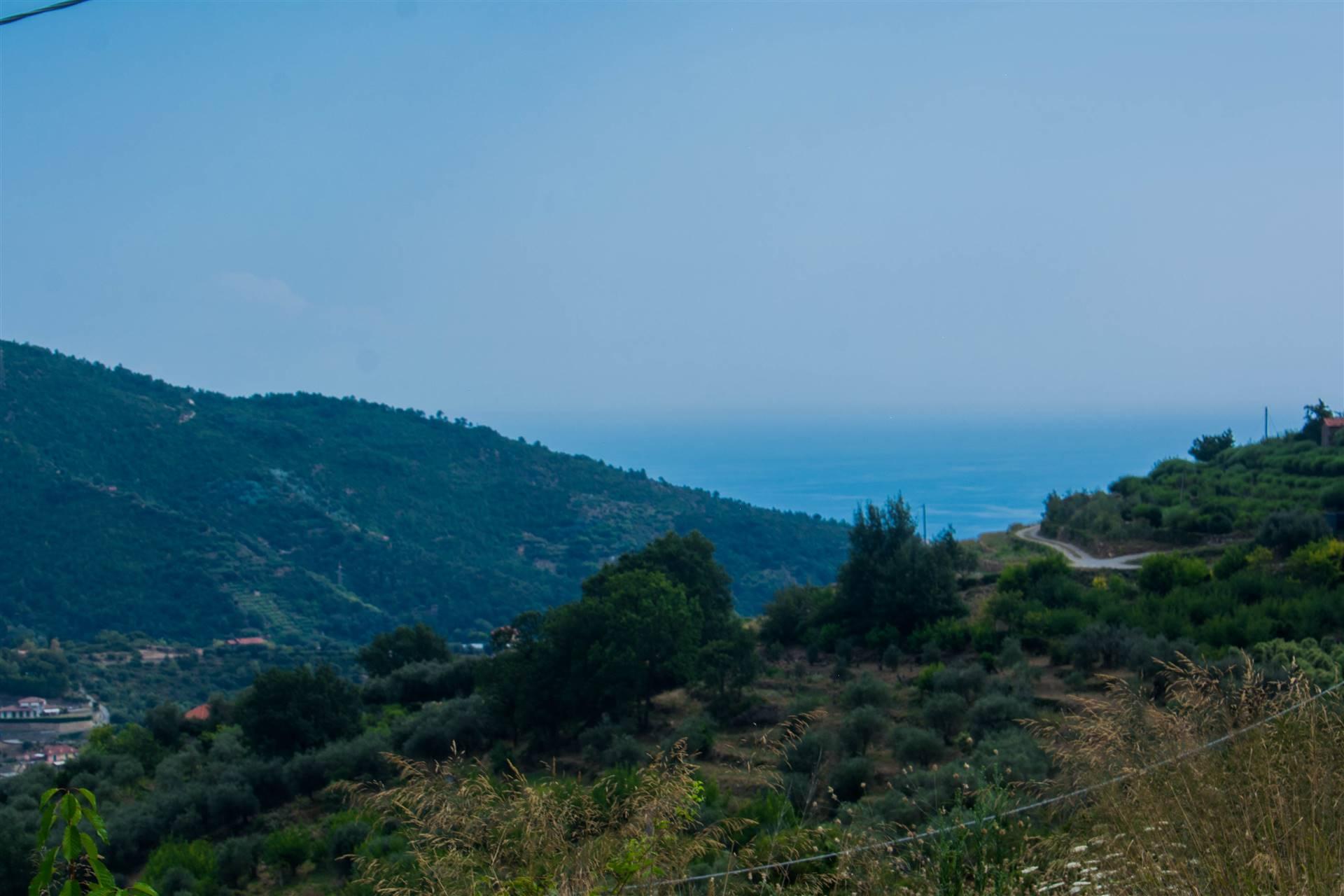 Terreno Edificabile Residenziale in vendita a Vallebona, 4 locali, prezzo € 70.000 | PortaleAgenzieImmobiliari.it