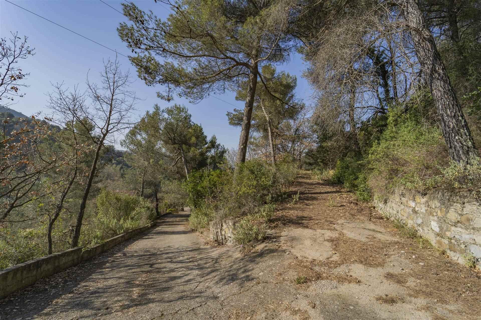 Terreno Edificabile Residenziale in vendita a Seborga, 4 locali, prezzo € 75.000   PortaleAgenzieImmobiliari.it