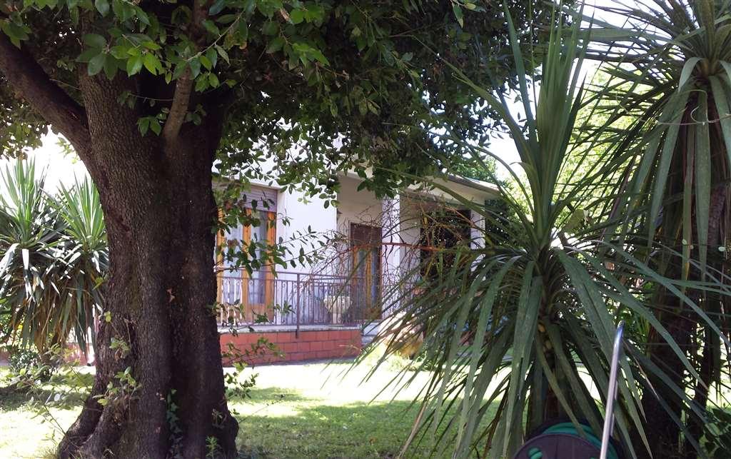 Villa, Vecchiano, abitabile