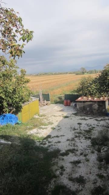 Rustico casale, Putignano, Pisa, da ristrutturare