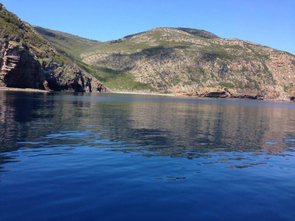 Bilocale, Capraia Isola, in ottime condizioni