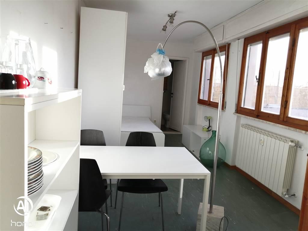 PISA centralissimo vicino alla maggior parte delle facoltà ed al CNR, comodissimo appartamento di 35 mq suddivisa in vano unico con 50 mq di terrazza,