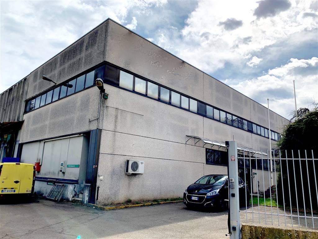 Vendita Capannone Commerciale/Industriale Lomazzo 177174