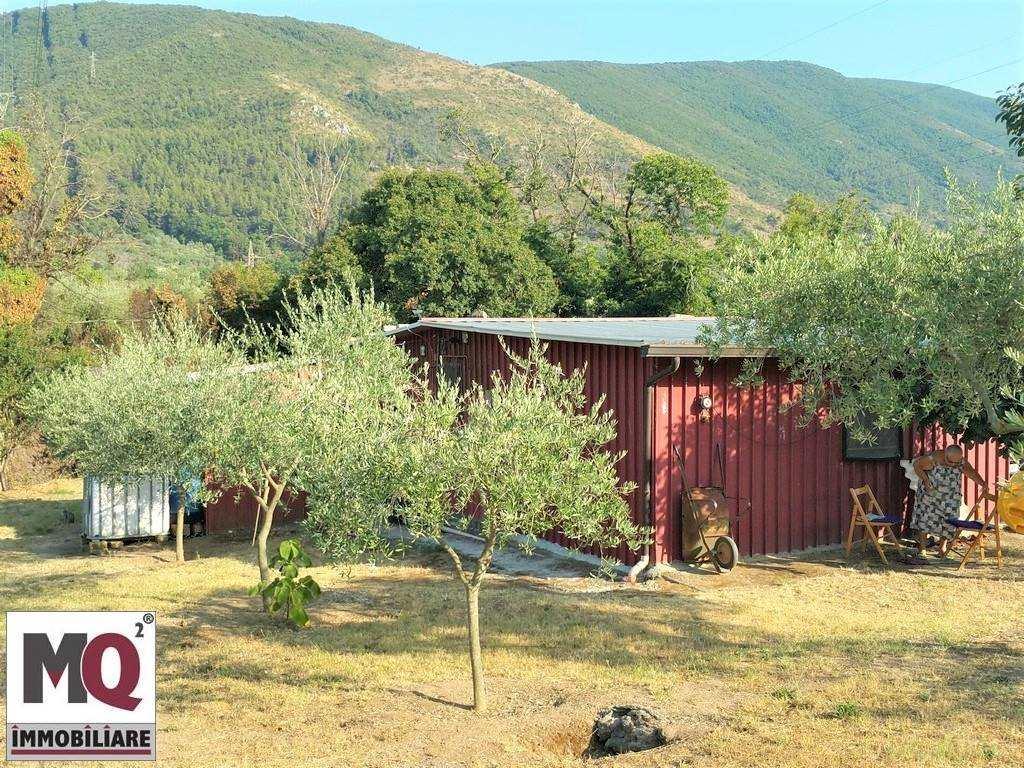 Terreno Agricolo in vendita a Sessa Aurunca, 9999 locali, zona Località: PIEDIMONTE, prezzo € 24.000 | CambioCasa.it