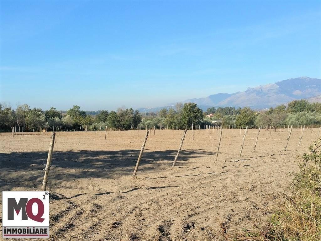 Terreno Agricolo in vendita a Sessa Aurunca, 9999 locali, prezzo € 28.000 | CambioCasa.it