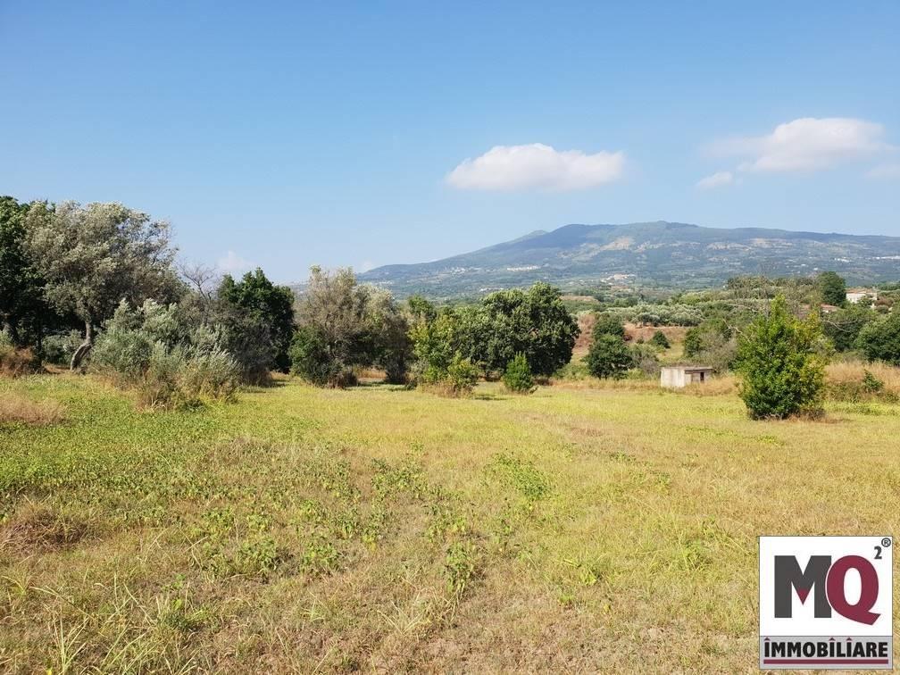 Terreno Agricolo in vendita a Sessa Aurunca, 9999 locali, zona Località: LAURO, prezzo € 85.000 | CambioCasa.it