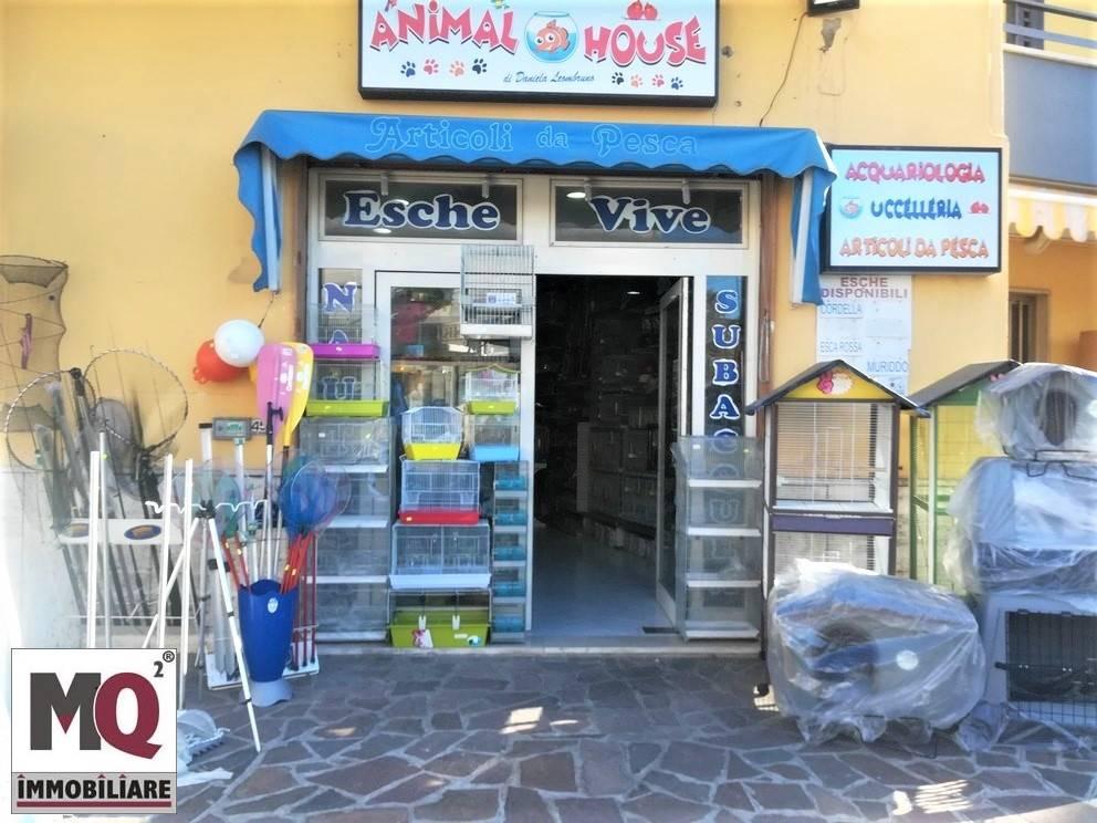 Attività / Licenza in vendita a Mondragone, 9999 locali, prezzo € 22.000   CambioCasa.it