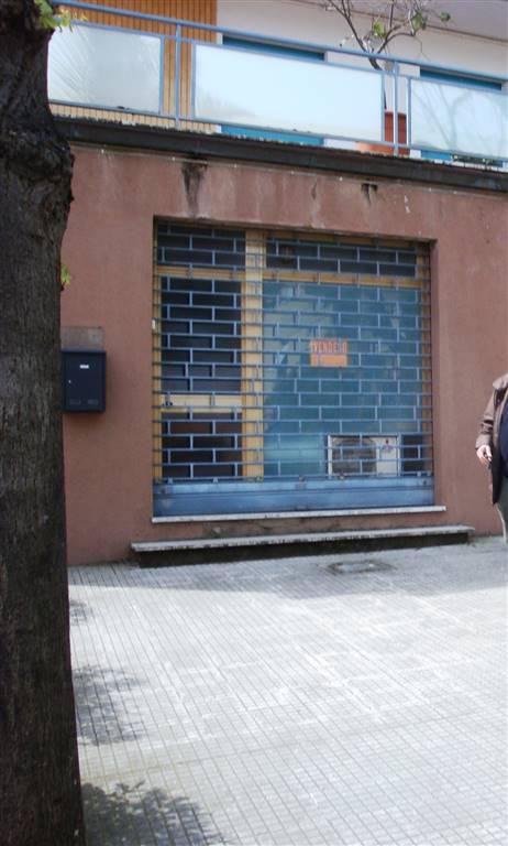 Ufficio, Ancona