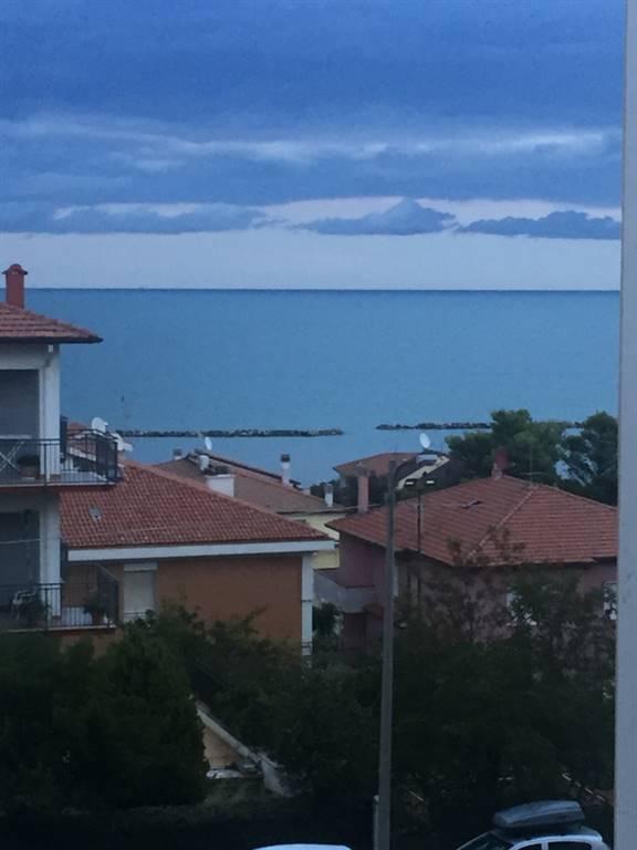 Quadrilocale, Ancona