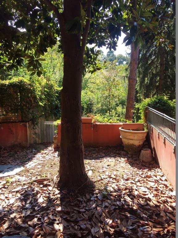 Appartamento, Monte D'ago, Ancona