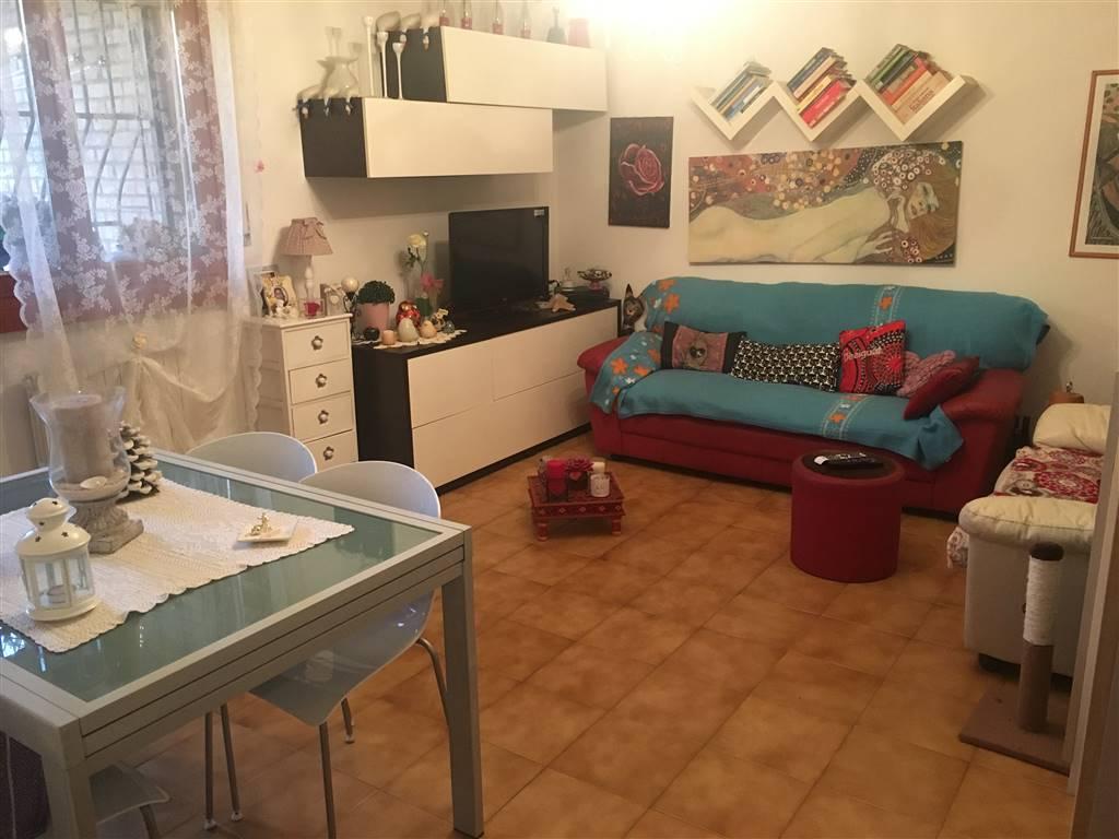 Quadrilocale, Centro, Ancona