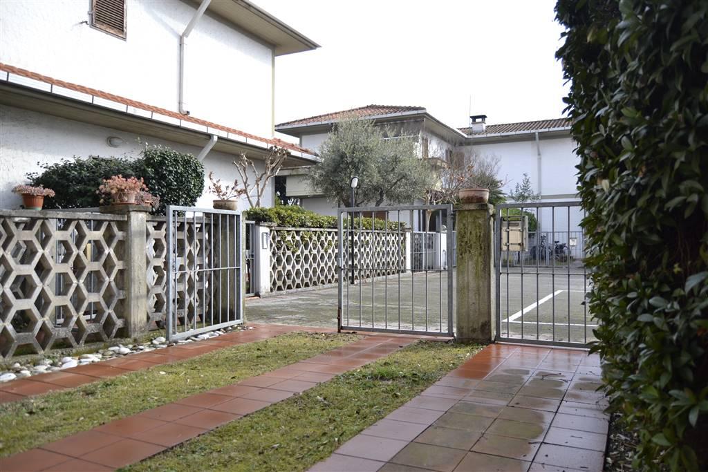 Foto giardinetto ingresso