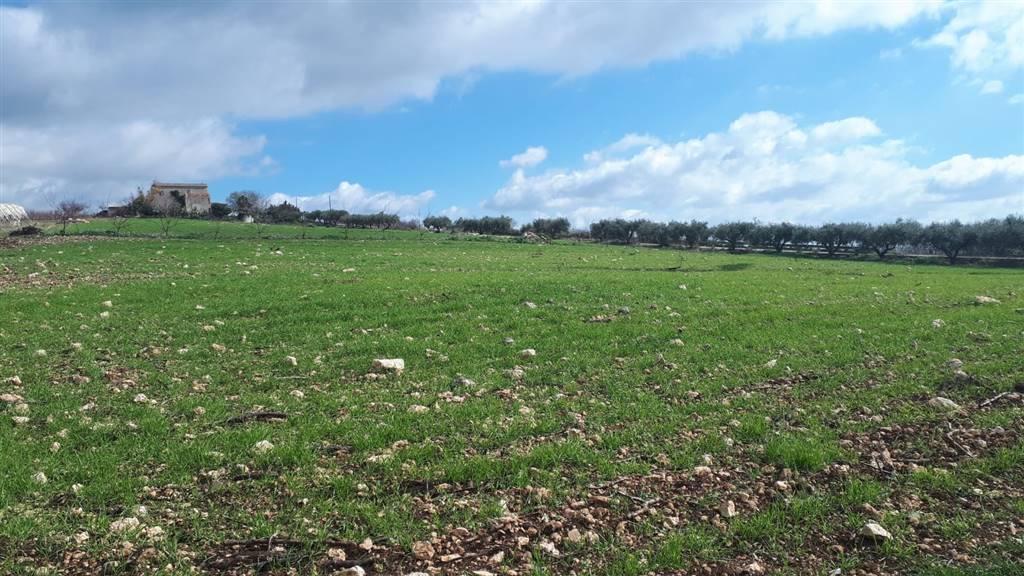 Terreno Agricolo in vendita a Naro, 1 locali, prezzo € 80.000   CambioCasa.it