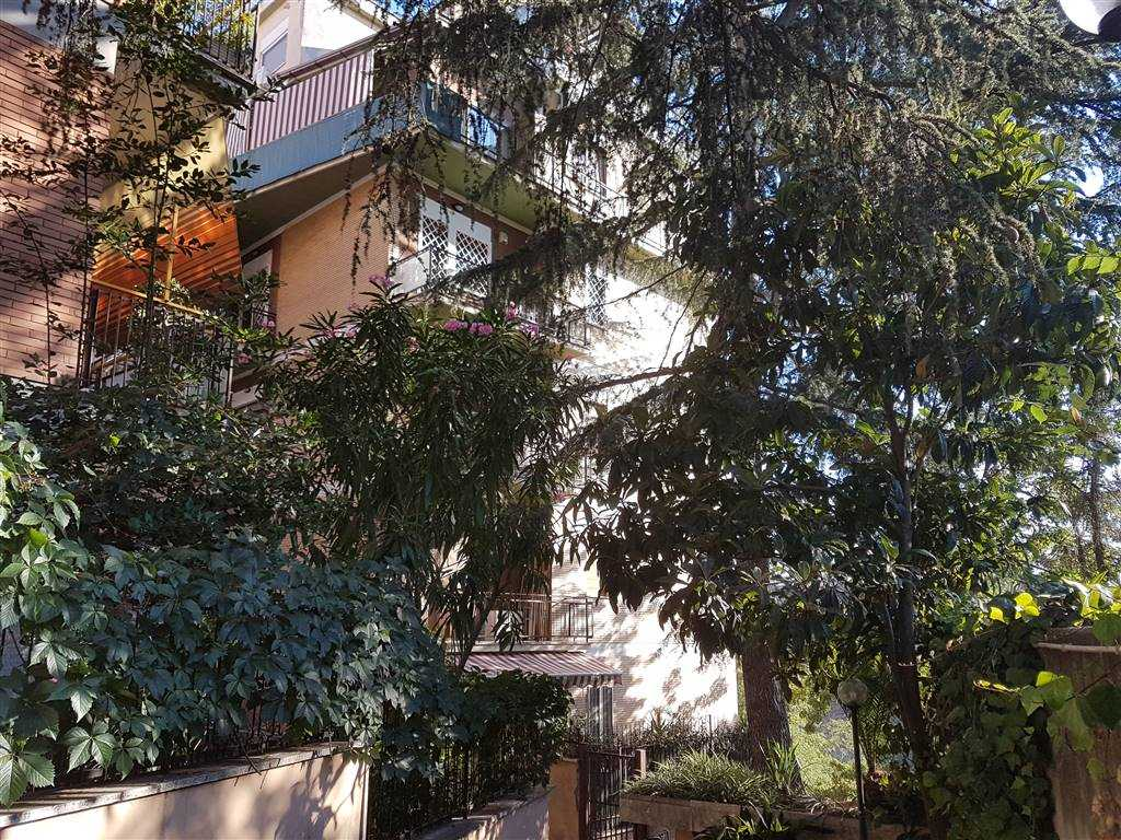 Quadrilocale, Boccea, Torrevecchia, Pineta Sacchetti, Roma