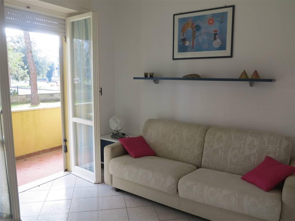 Appartamento in vendita a Follonica, 3 locali, zona Località: SALCIAINA, prezzo € 175.000 | CambioCasa.it