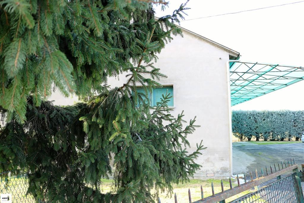Casa singola, Solarolo, abitabile